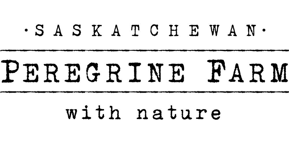 Peregrine Farm Saskatchewan